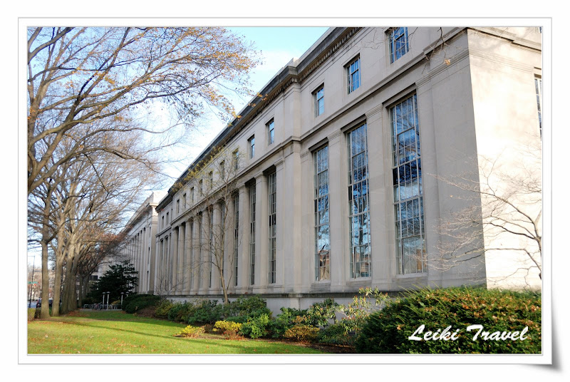 MIT  圖書館