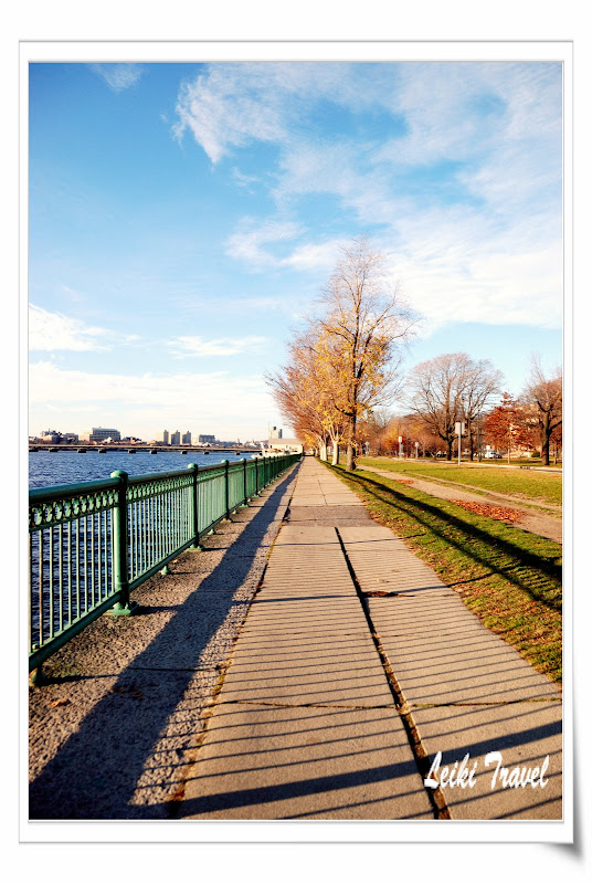 Charles River 河畔 (MIT side)