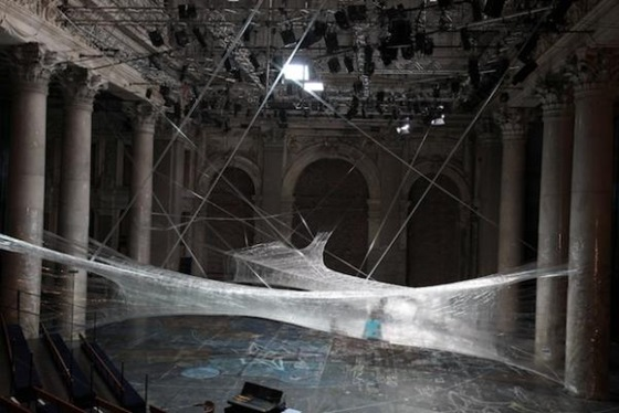 World's Largest Spider Web Ever Spun 06
