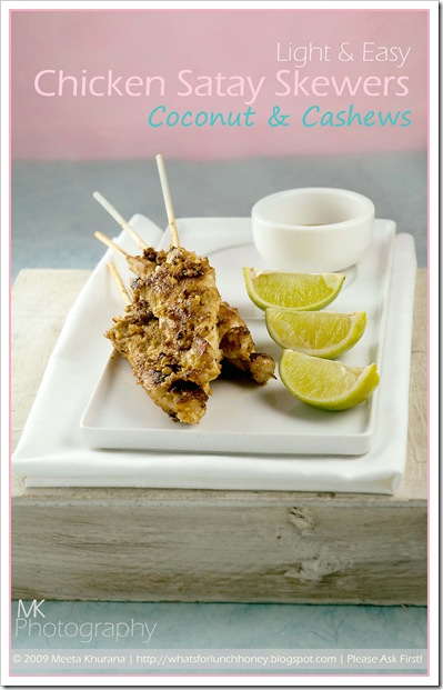 Coconut Cashew Chicken Satay (01) by MeetaK