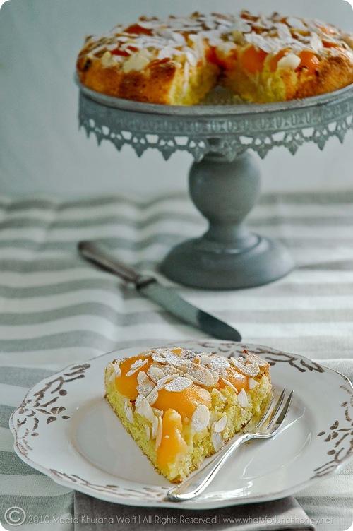 Apricot Saffron Cake (0007) by MeetaK