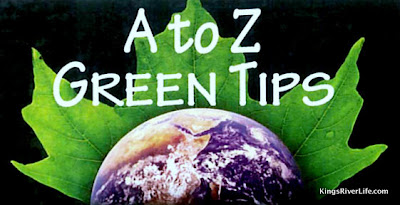 A to Z Green Tips
