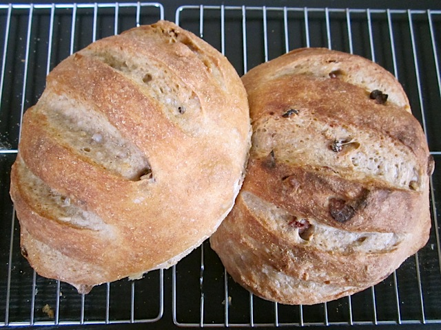 two loafs of cranberry walnut bread on cooling rack