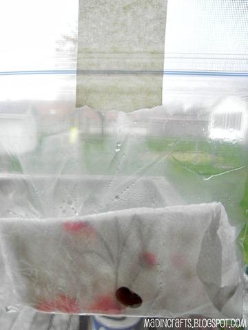 condensation forming