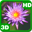 The Lost Purple Waterlily Pond icon