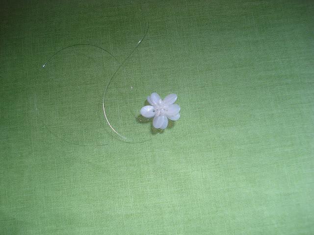 Flor de pedrarias