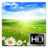 Magic Weather 3D
