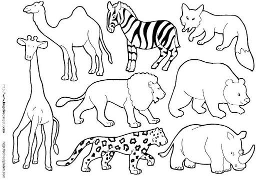 Imagenes De Animales Salvajes Para Colorear Con Sus Nombres En