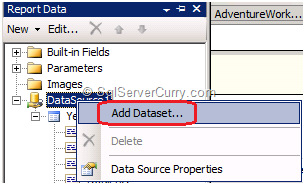 SSRS Add Dataset