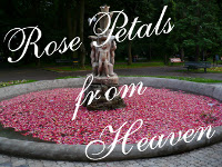 Rose Petals from Heaven