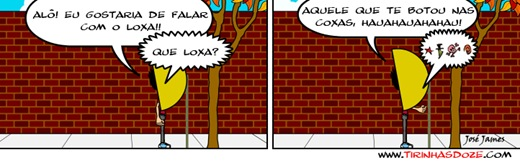 O Loxa