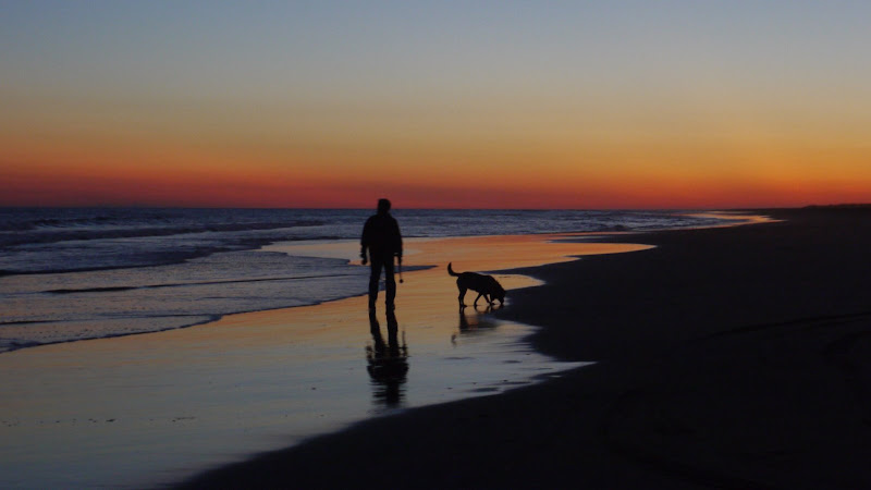 Emerald Isle NC - Man & Dog at Sunset over ocean