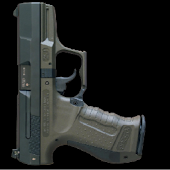 SIM for Firearms
