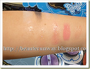 anna sui lip palette swatches 1