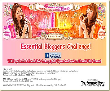 Essential bloggers challenge