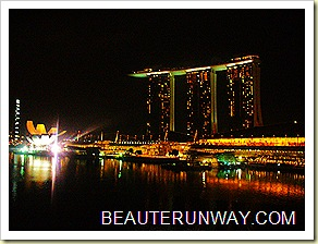 Marina Bay Sands Night
