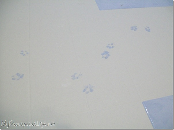 paw prints on my vinyl floor