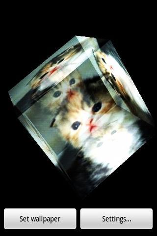 3D lovely cat 3 - screenshot