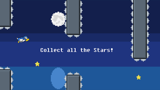 Birdy Flap: Collect the Stars