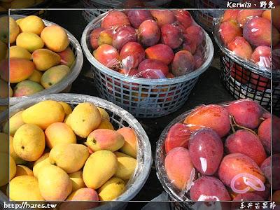 [台南] 2009 玉井芒果節
