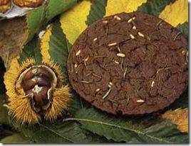 castagnaccio e pinoli
