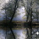 Natures Reflection LWP