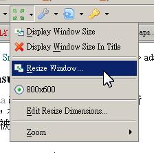 使用 WebDeveloper 快速設定瀏覽器尺寸