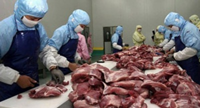 meat_factory_workers