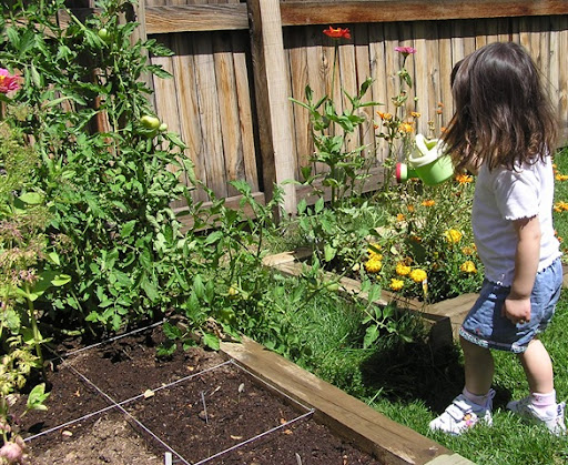 Uk Raised Garden Beds For Children