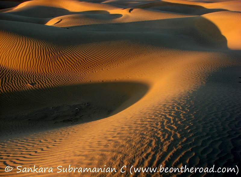 The desert beauty of Rajasthan