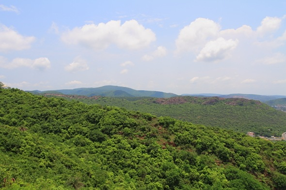 Green Eastern Ghats near Vizag