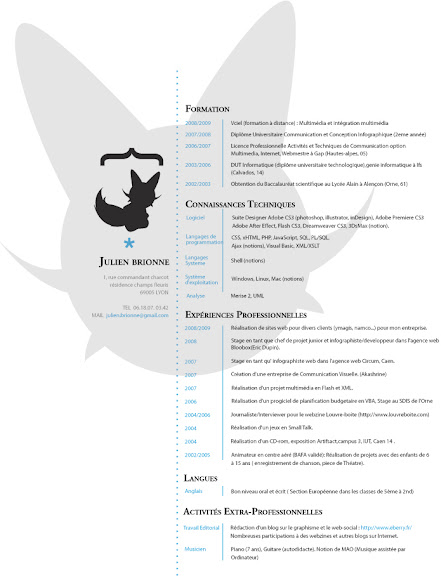 Resume_by_Akashrine.jpg