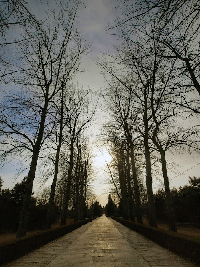 The Sacred Road by Khaled Ibrahim - City,  Street & Park  Historic Districts