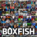 Boxfish TV Guide icon