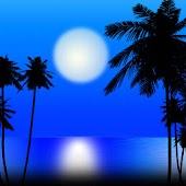 Island Moonlight theme 480x800