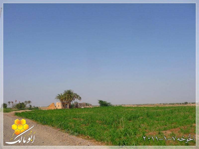مكان جديد من اليمن السعيد . . . الخوخه 203.jpg