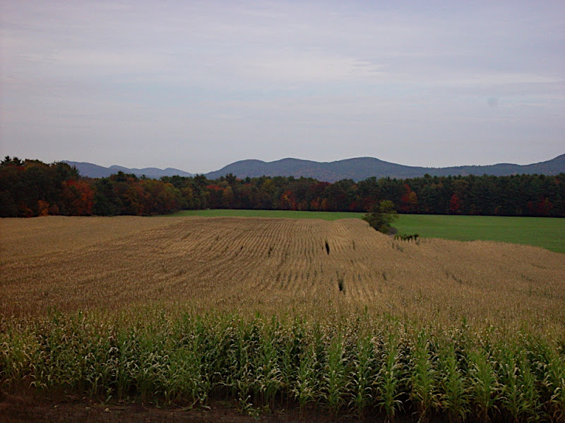 View of Holyoke Range in W. Mass.