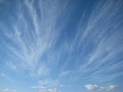 Florida Gulf Skywatch This Morning Chem Sky Over Panama