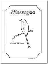 guardabarranco 2 1