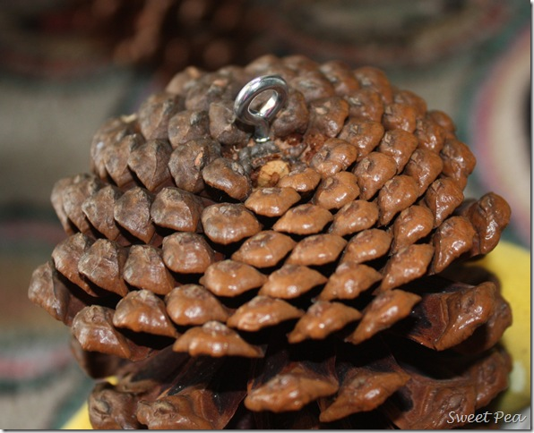 How to Hang a Pinecone