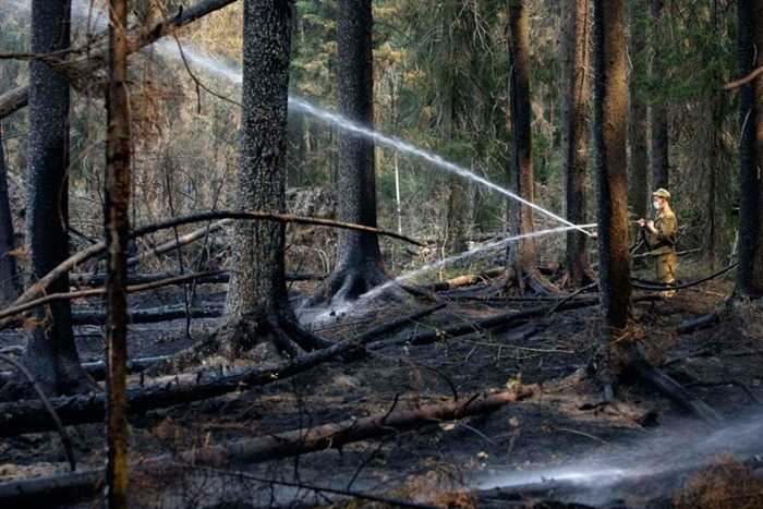 russia-forest-fire (30)