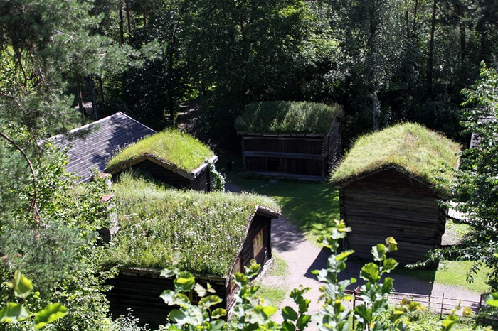green-roof-norway (8)