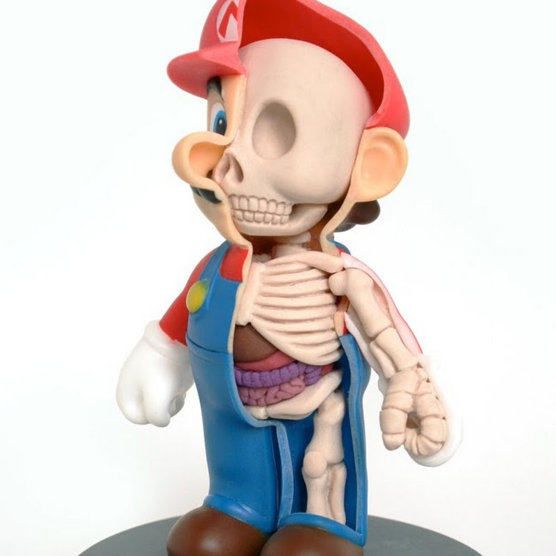 Anatomical Cartoon Characters by Jason Freeny | Amusing Planet