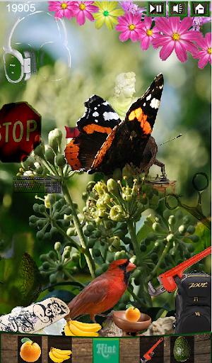 Hidden Object - Butterfly