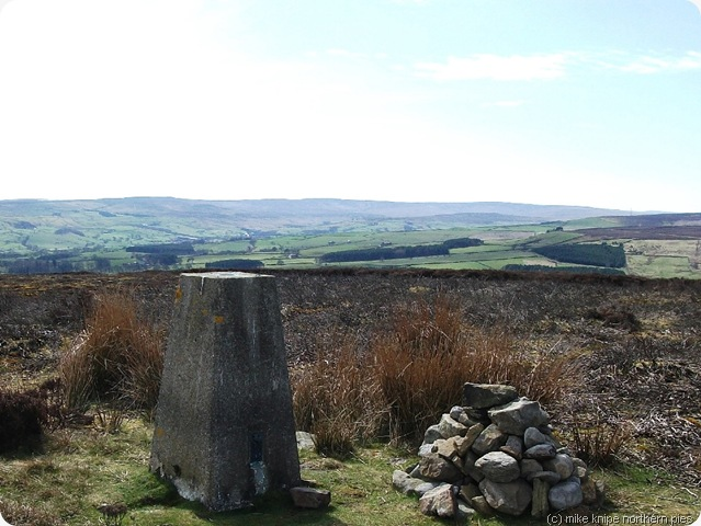 wolsingham north moor top