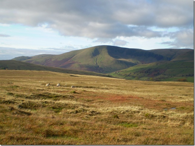 cautley crag from ravenstonedale common