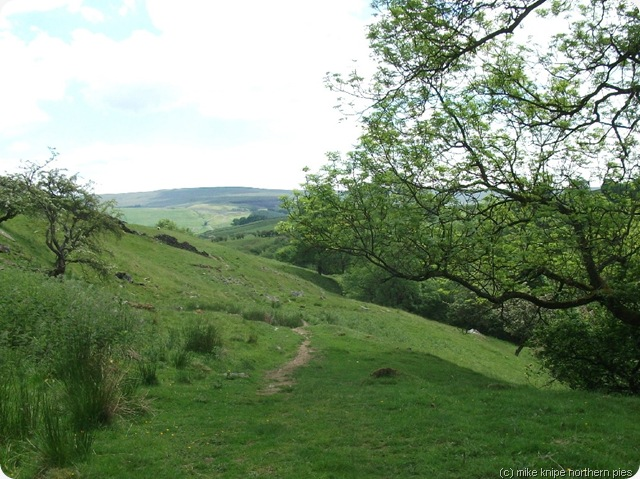 rookhope to eastgate path