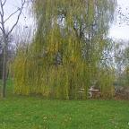 Etang de Civrieux photo #190
