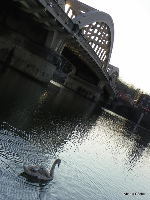 Pont de Neuville sur Saône photo #276