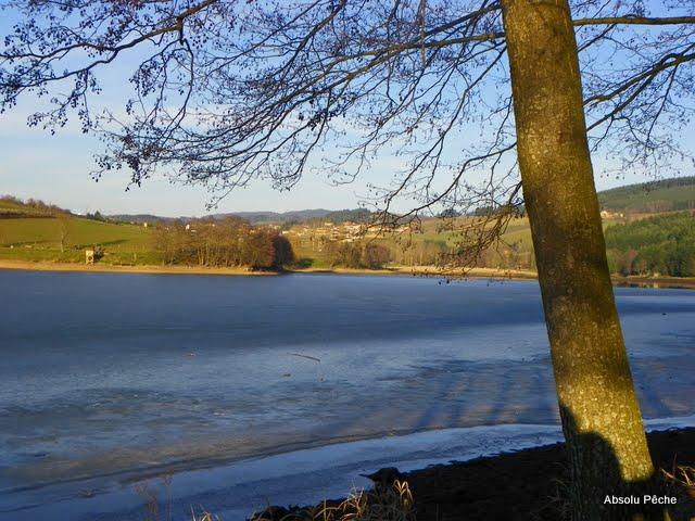 Lac des sapins à Cublize photo #218